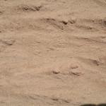 Sand_0-2